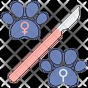 Spay Icon