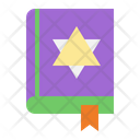 Spell Book Witch Wizard Icon