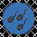 Sperm Fertilization Spermatozoon Icon