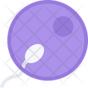 Sperm Reproduction Fertilization Icon