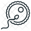 Cell Ovum Gamete Icon
