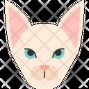 Sphynx Cat Icon