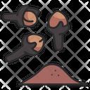Spice Clove Food Icon