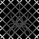 Spider Danger Fear Icon