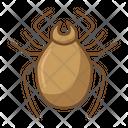 Spider Tarantula Bug Icon