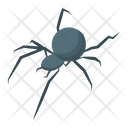 Spider Halloween Spider Insect Web Icon