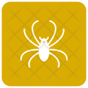 Arachnid Spider Insect Icon