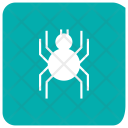 Spider Bug Insect Icon