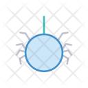 Spider Arachind Insect Icon