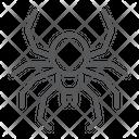 Spider Spooky Animal Icon
