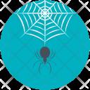 Spider Evil Cobweb Icon