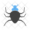 Spider Insect Animal Icon