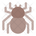 Spider Animal Animals Icon