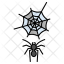 Spider Web Insect Icon