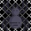 Spider Tarantula Scary Icon