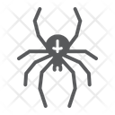 Spider Arachind Halloween Icon