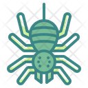Spider Spooky Scary Icon