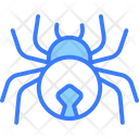 Spider Insect Bug Icon