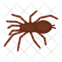 Spider baboon Icon