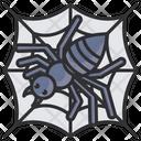 Spider Bug Icon