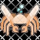Spider Crab Animal Ocean Icon