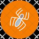 Spider Halloween Zombie Icon