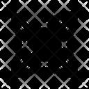 Spider Net Spider Net Icon