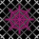 Spider Web Cobweb Spider Icon