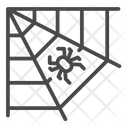 Old Spider Web Icon