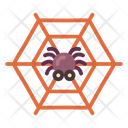 Web Cobweb Trap Icon