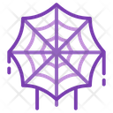 Web Spider Cobweb Icon
