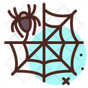 Spider Web Insect Fly Icon