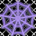 Spiders Web Icon