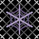 Spider Web Spiderweb Icon
