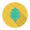 Spinach Vegetable Leaf Icon