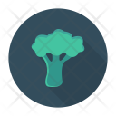 Spinach Vegetable Nature Icon