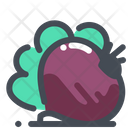 Spinach Beetroot Vegetable Icon