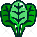 Spinach Leaf Leaves Icon
