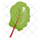 Spinach Leaf Spinach Vegetable Icon
