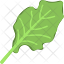 Spinach Leaves Vegetable Icon