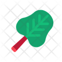 Spinach Fresh Vegetables Icon