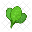 Spinach Vegetables Vegetarian Icon
