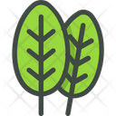 Spinach Leaves Leaf Icon