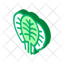 Spinach Leaves Protein Icon