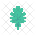 Spinacjh leaf Icon