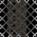 Spinal Column Bones Healthcare Icon