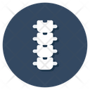 Spine Backbone Spinal Column Icon