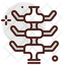 Spine Health Back Icon