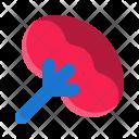 Spleen Icon