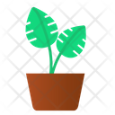 Split Leaf Pot Plant Green Icon
